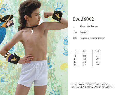 IBA 36002 Боксеры Academia