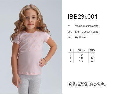 IBF 23v001 футболка Actual