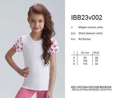 IBF 23v002 футболка Actual